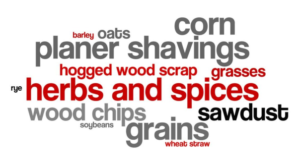 cuf application.wordle resized 600