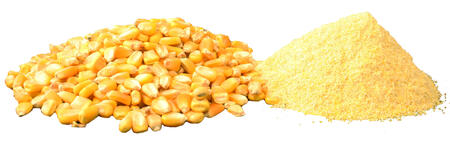 corn before and after hammer mill processing